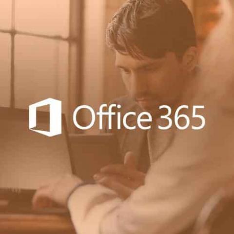 Bán tài khoản Office 365 Pro Plus Lifetime