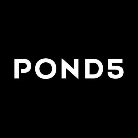 Dịch vụ mua bán Pond5 bản quyền giá rẻ