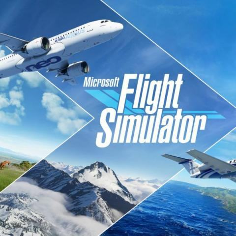 Microsoft Flight Simulator – Standard Edition + Online Multiplayer